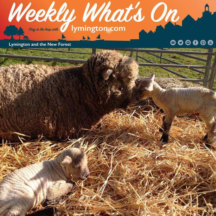 Weekly What's On in the New Forest