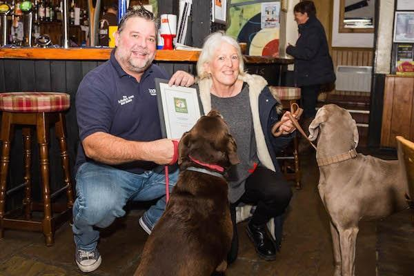Woofing good! Announcing the winners of the New Forest Dog Friendly Awards 2018
