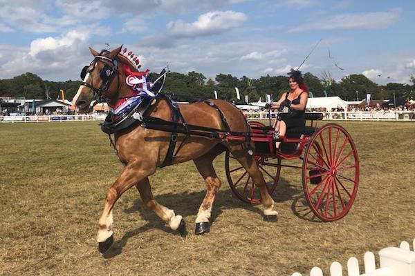 Crowds flock to the 99th New Forest and Hampshire County Show