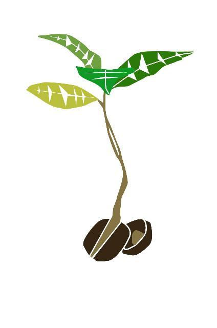 Lymington Transition logo seedling