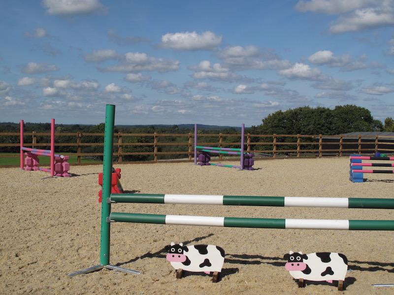 Arena at Tilefield Equestrian, New Forest Hampshire
