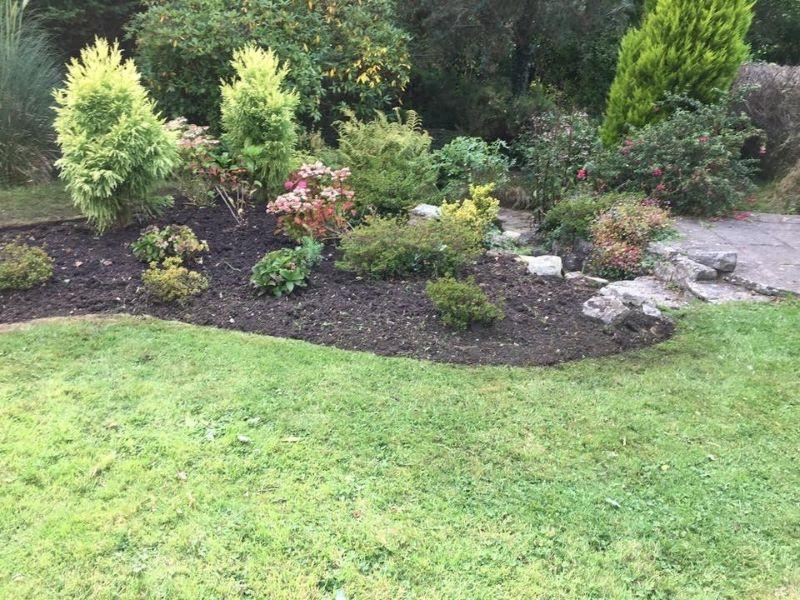 Sterling Gardens garden maintenance a newly maintained bed
