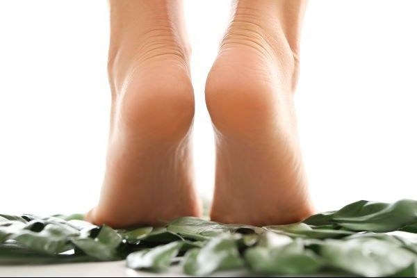 Forest Foot and Health