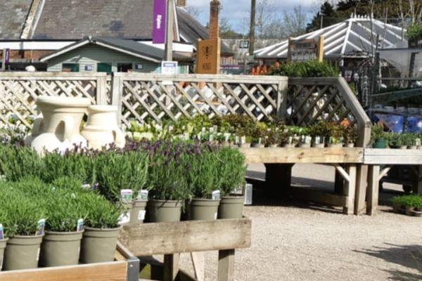 Fairweather's Garden Centre