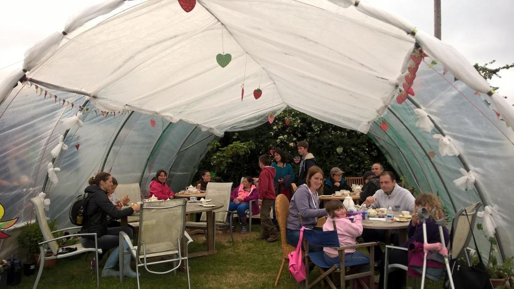 Goodall's tea garden