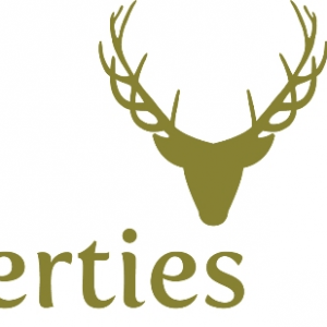New Forest Properties