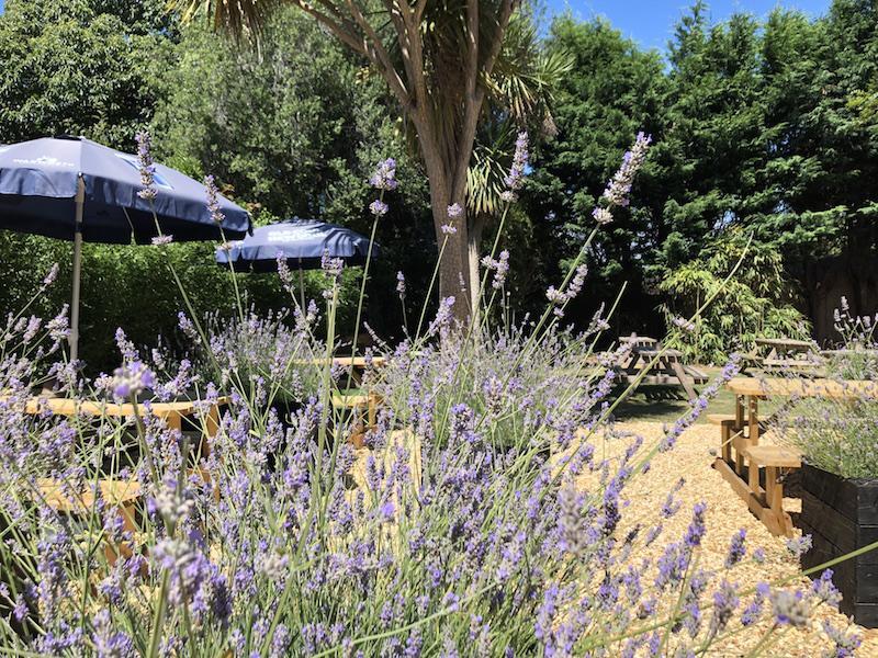 Bosun's Chair garden in summer