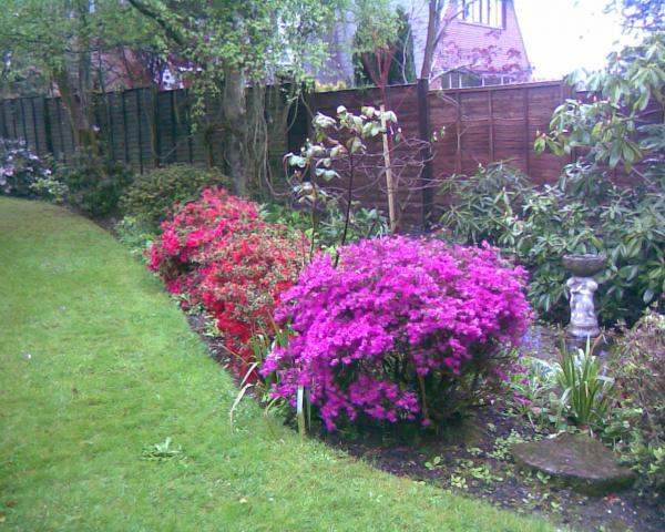 J100 Horticulture gardening and landscaping very colourful garden